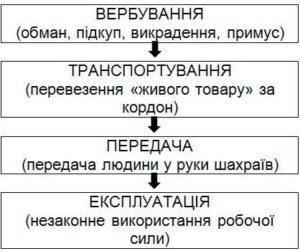 Схема-торгівлі-людьми